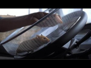 Volvo Trucks - The Hamster Stunt (Live Test 2)